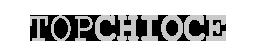 temp_logo_topchoice.png